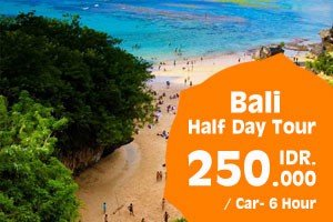 half-day-tour-auto-car-rental-bali-com-bali-driver-cheap-car-rental-promo-tour